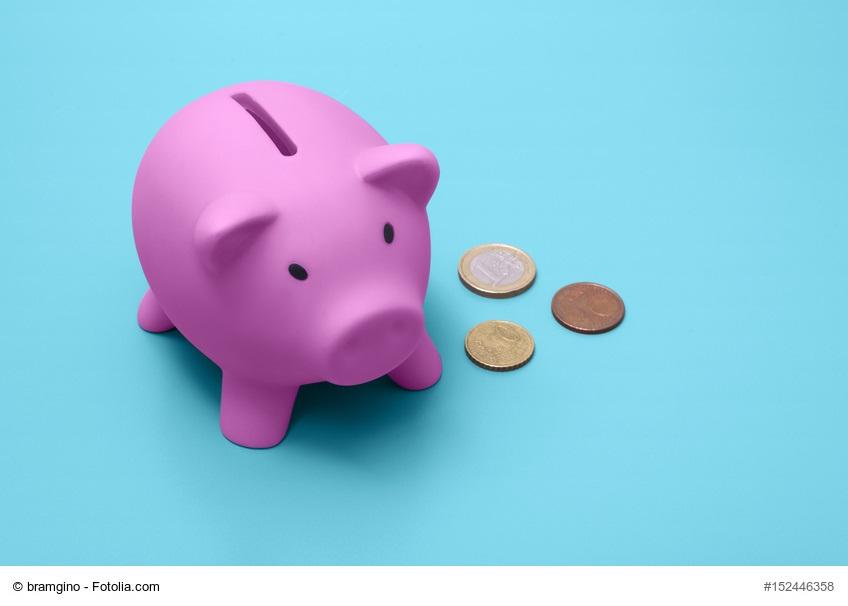 Ist LCHF teuer - Sparschwein